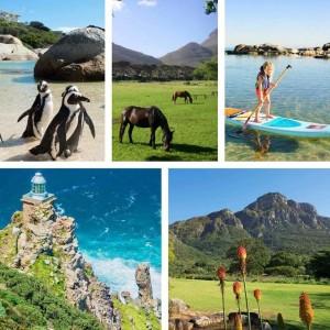 Latest News | Cape Villa Collection